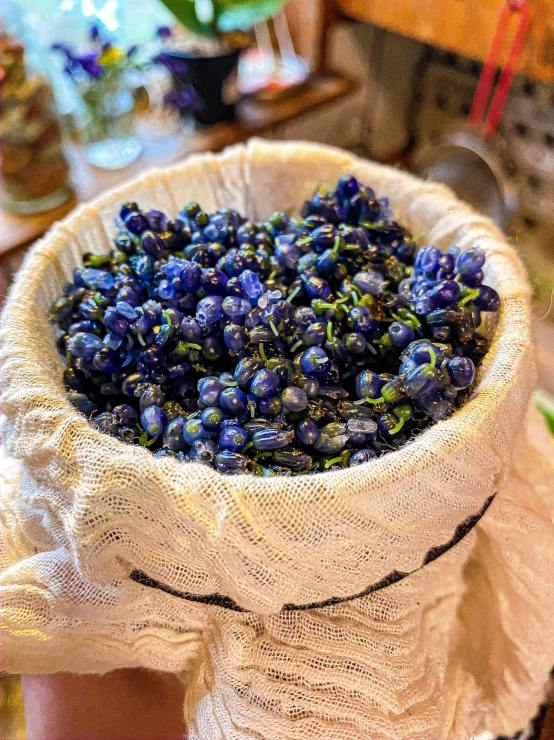 Grape hyacinth strained through cheesecloth