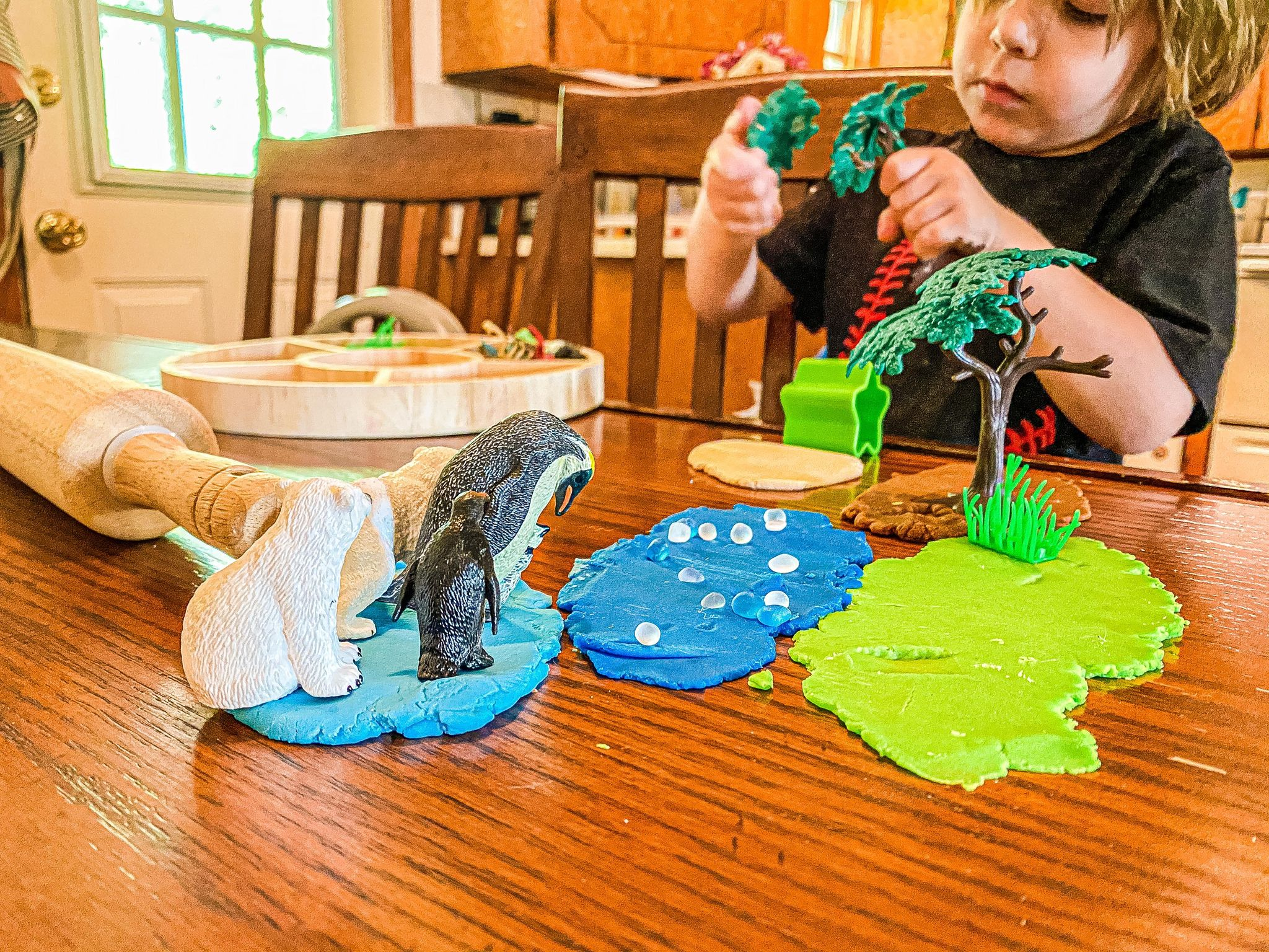 Animal Habitat Invitation to Play