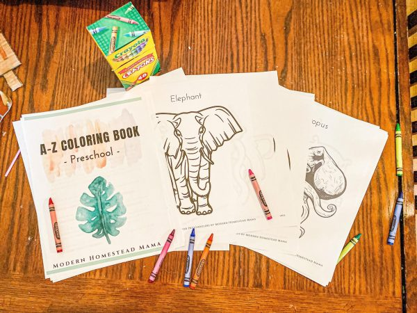 A-Z Coloring Book for Preschoolers