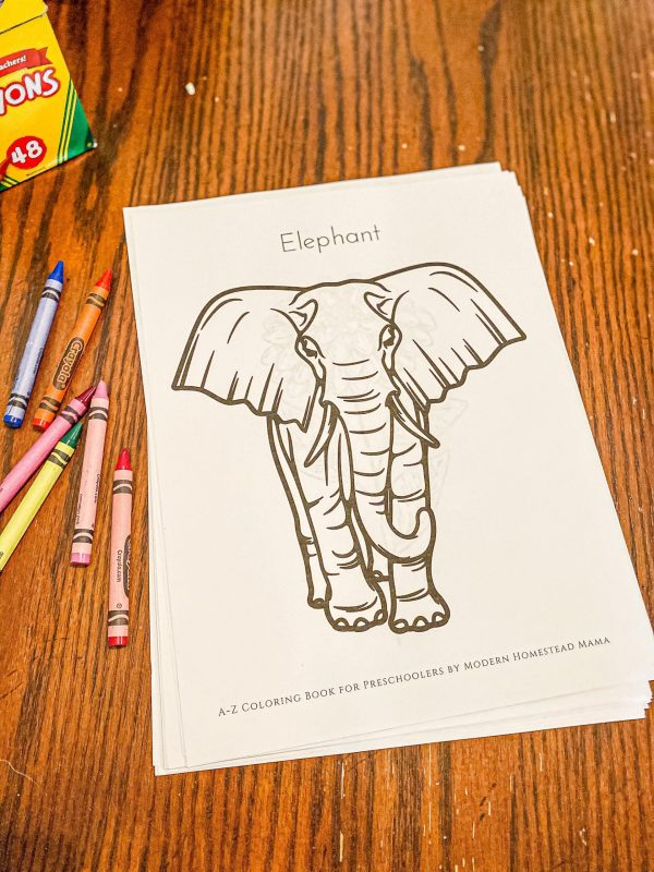 A-Z Coloring Book for Preschoolers Elephant