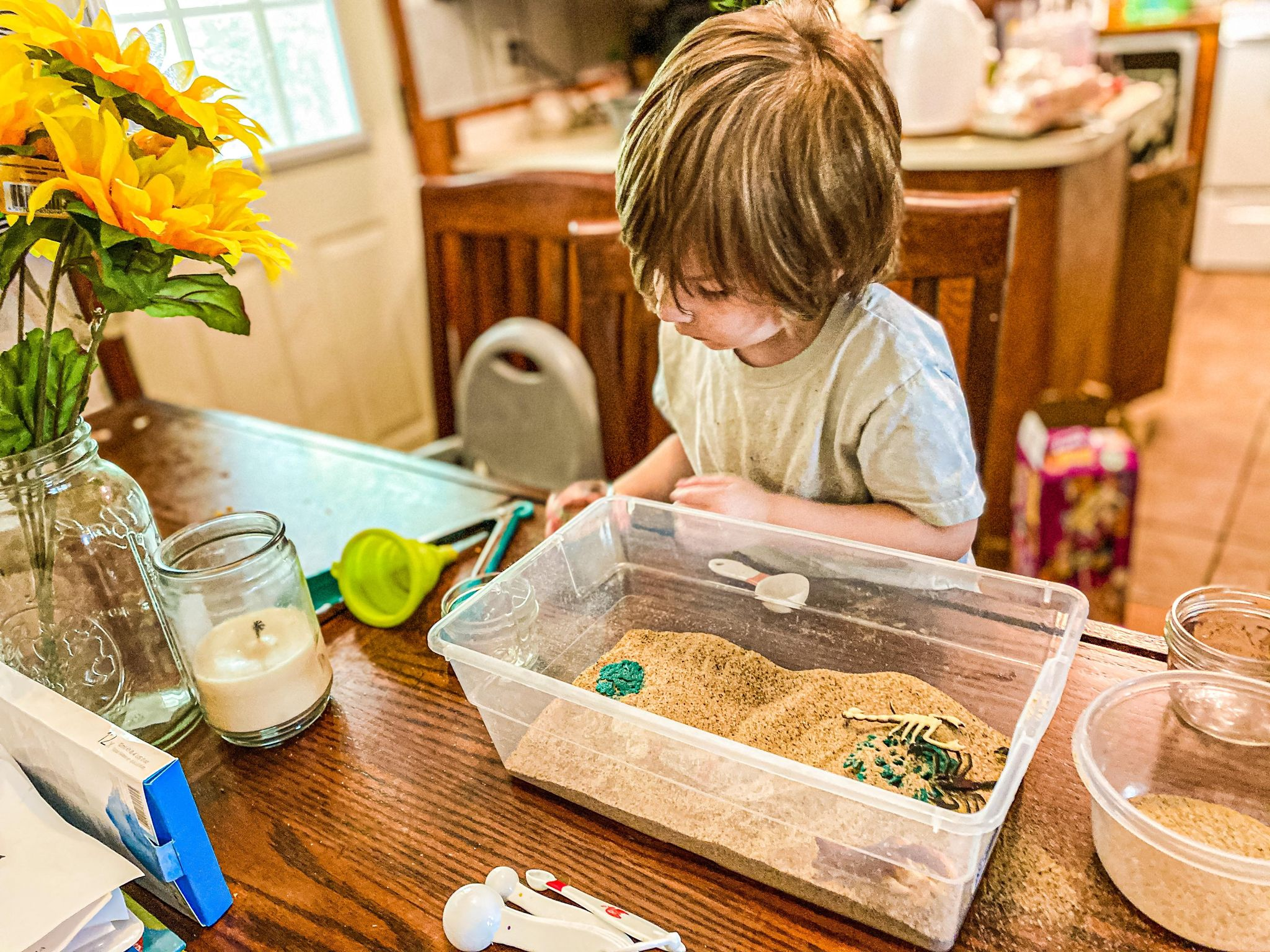 Desert Sensory Bin Activity for Preschoolers