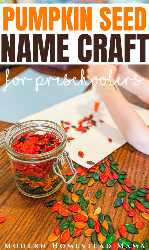 Pumpkin Seed Name Craft for Preschoolers | Modern Homestead Mama