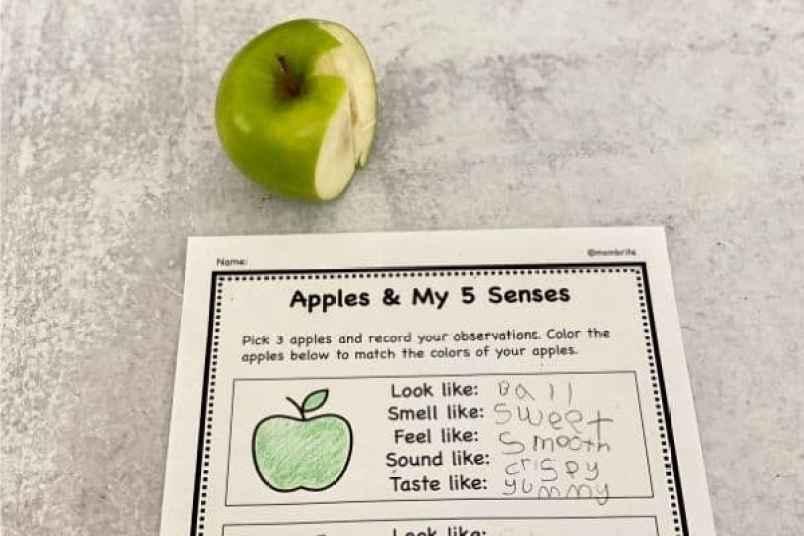 5 Senses Apple Activity