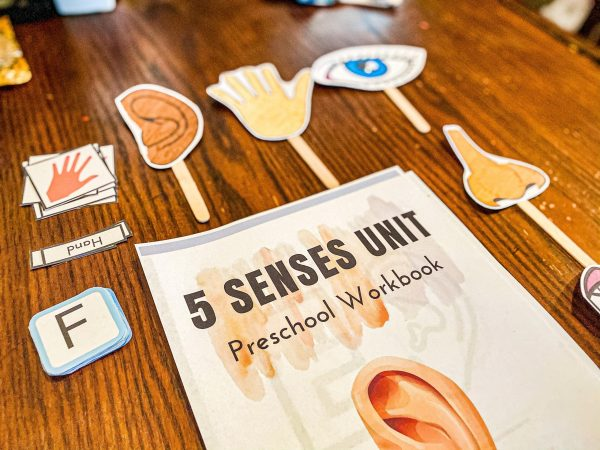 5 Senses Pre-k Workbook