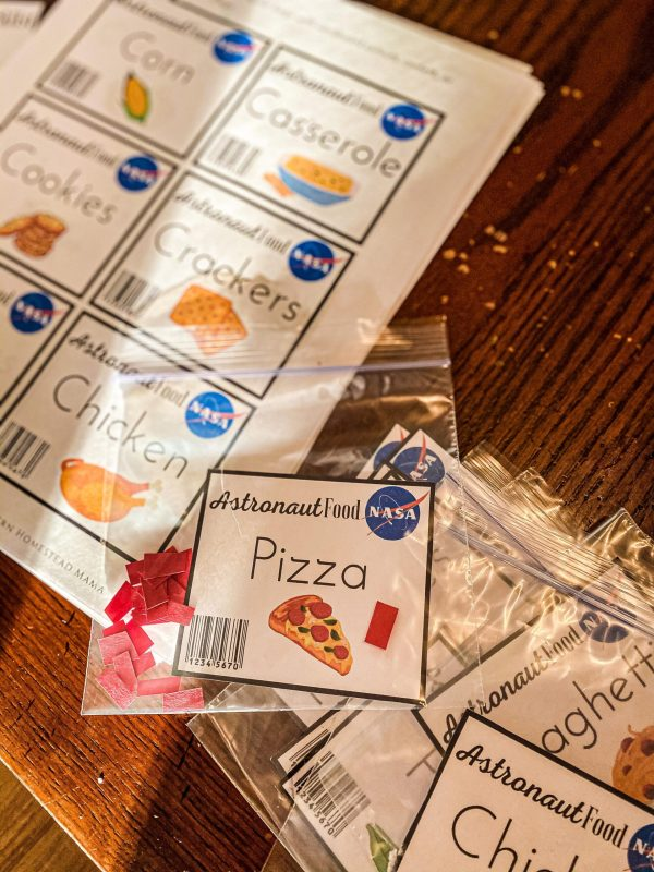 Astronaut Dramatic Play Bundle Astronaut Food Printables for Play Pretend for Kids