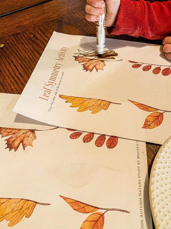 Fall Leaf Symmetry Printable