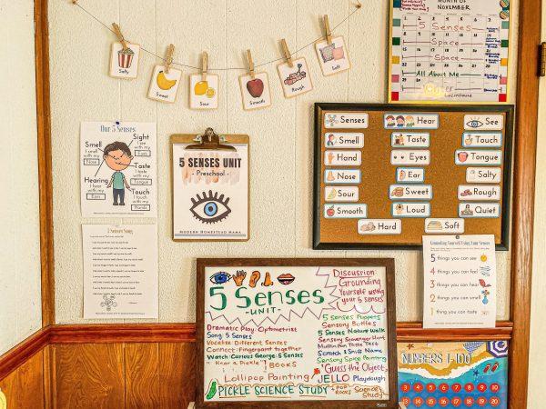 Modern Homestead Mama Preschool Shop