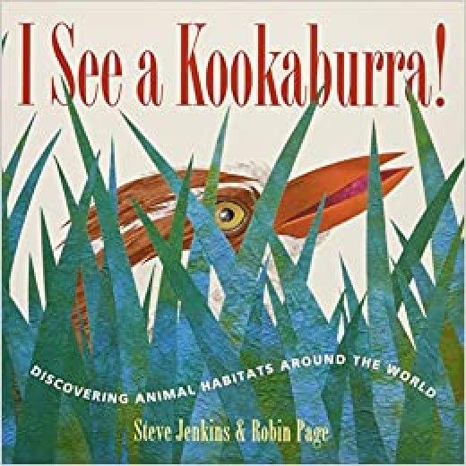 I See a Kookaburra