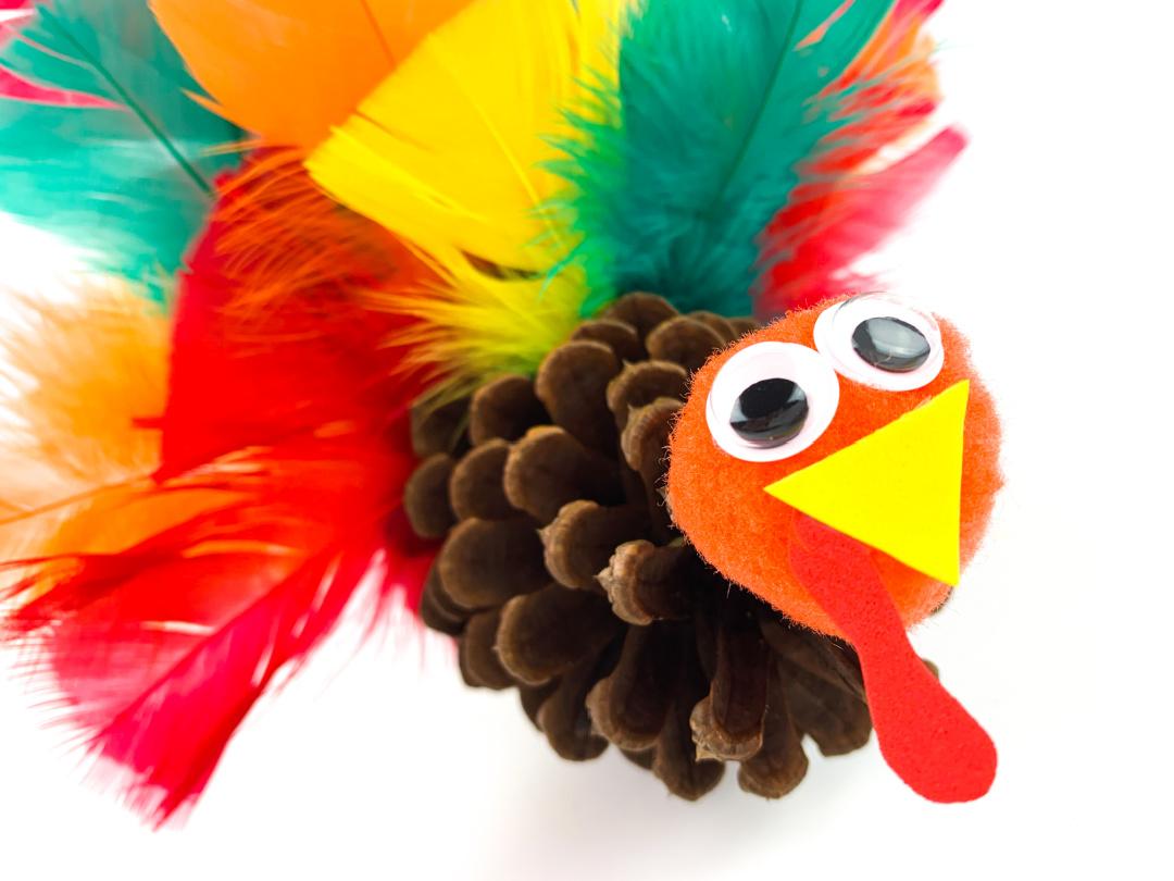 Pine Cone Turkey Craft