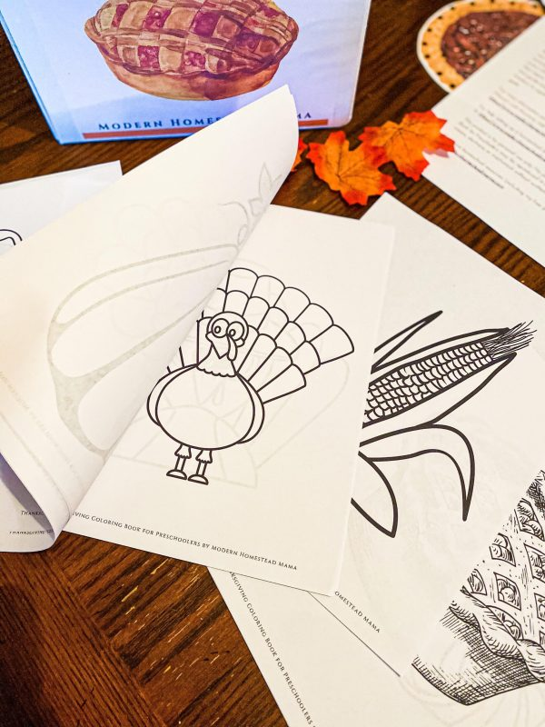 Thanksgiving Coloring Book