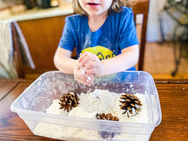 Easy 2-Ingredient Pretend Snow Sensory Bin