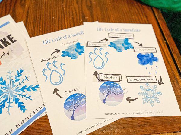 Snowflake Homeschool Nature Study