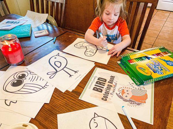 Bird Coloring Book Printable for Homeschool Pre-K