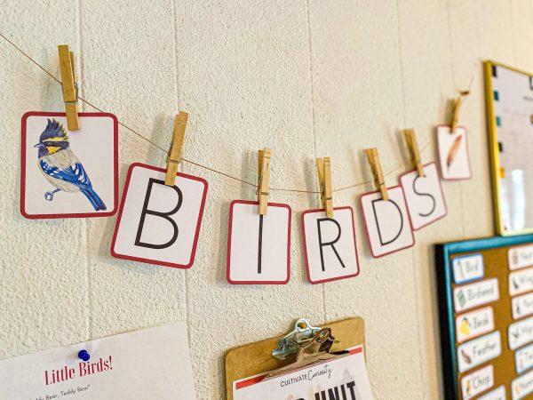 Bird Unit Decor