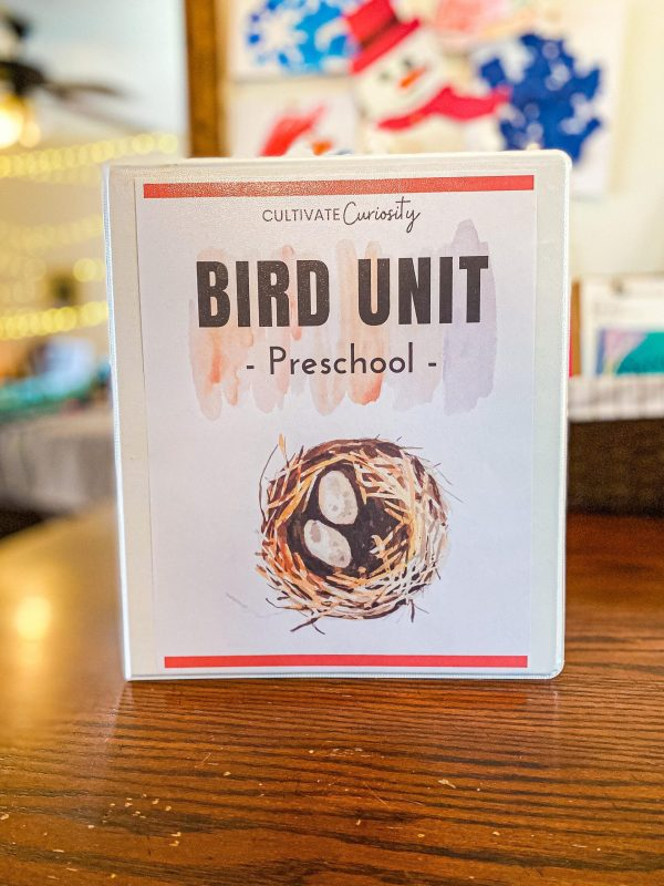 Bird Preschool Unit