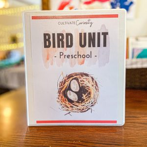 Bird Preschool Unit