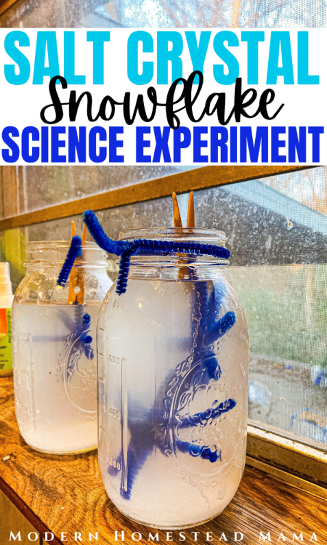 Salt Crystal Snowflakes Winter Science Experiment | Modern Homestead Mama