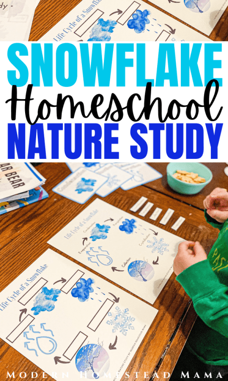 Snowflake Homeschool Nature Study | Modern Homestead Mama