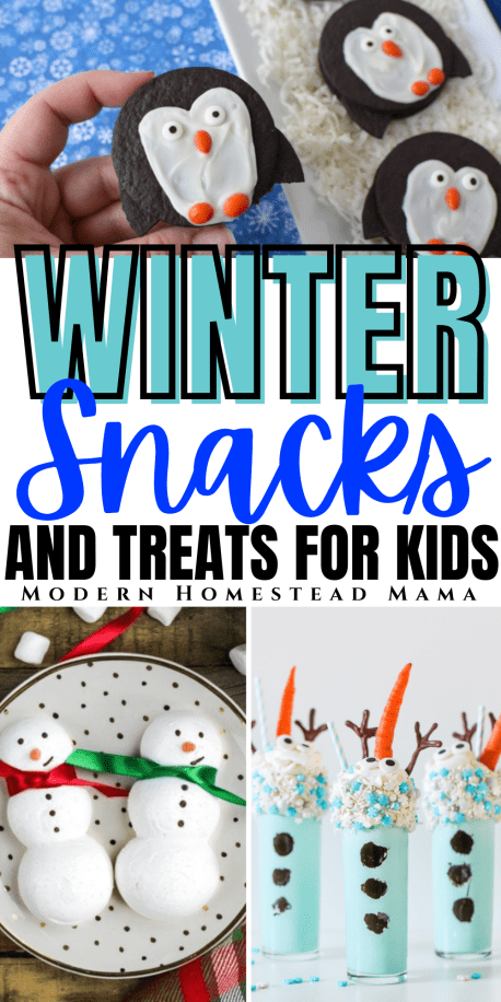 Winter Snacks for Kids | Modern Homestead Mama
