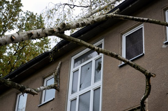 Window damage and house damage due to a fallen tree after a storm.