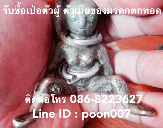 รับซื้ออีเป๋อ(ตัวเมีย) ไอ้เป๋อ (ตัวผู้) ใครต้องการปล่อยเป๋อเก่า ติดต่อผมได้ที่โทร 086-8223627, Line ID : poon007