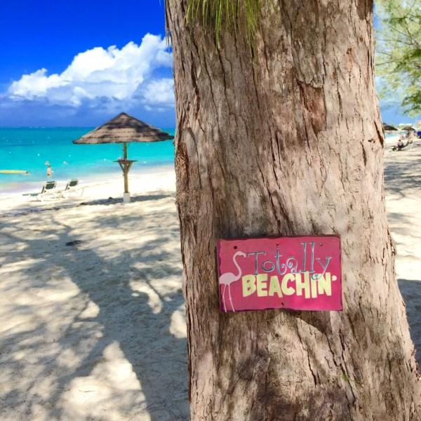 beaches 6