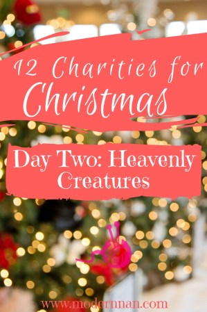 12 Charities For Christmas Day Two Heavenly Creatures | Modern Nan