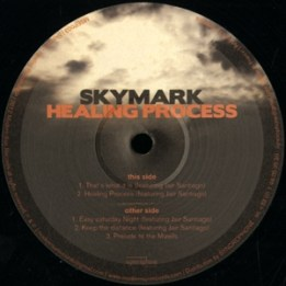 Skymark - Healing Process Ep (released in 2012)