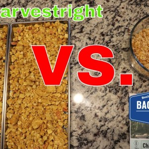 Backpackers Pantry Chana Masala vs. HARVESTRIGHT Home Freeze Dryer// Freeze Dried Recipe