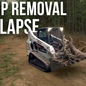 Stump Removal Timelapse | Forest to Farm