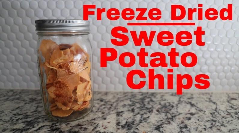 Freeze dried Sweet Potato Chips -- Freeze Dried Yams