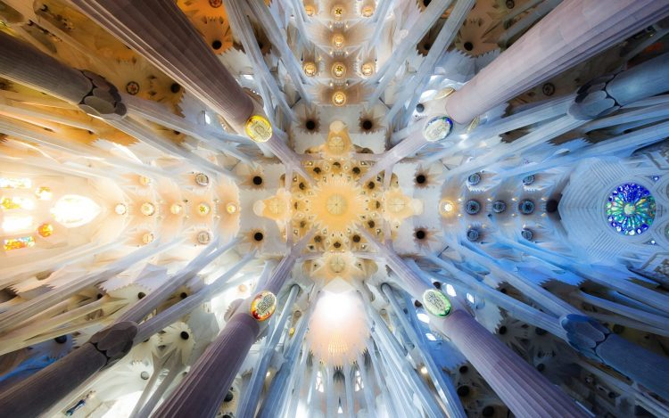 The Ceiling Of Sagrada Familia