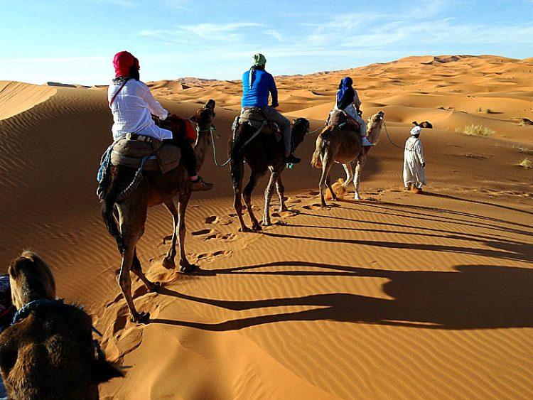 Camel Trek amidst Merzouga's Sand Dunes