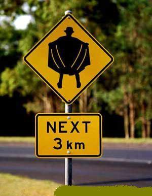 Bizzare Traffic Laws