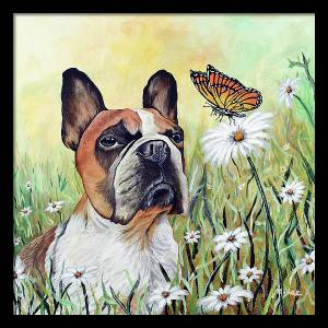 gizmo-and-the-butterfly-mikey-lee (1)