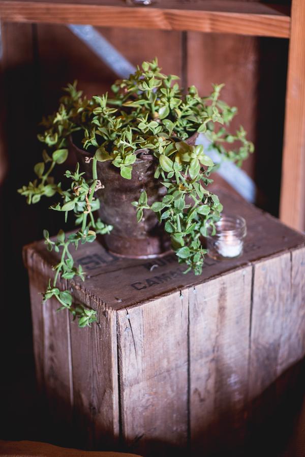 vintage ranch wedding