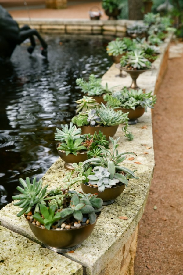 succulent garden wedding