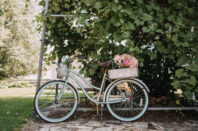 elegant French country wedding
