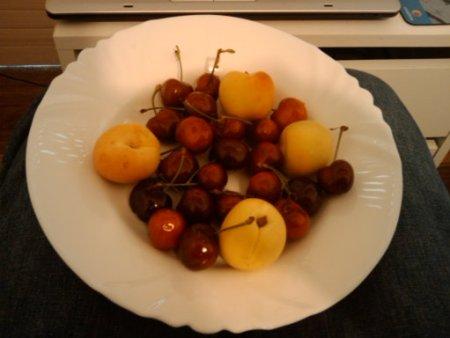 froita
