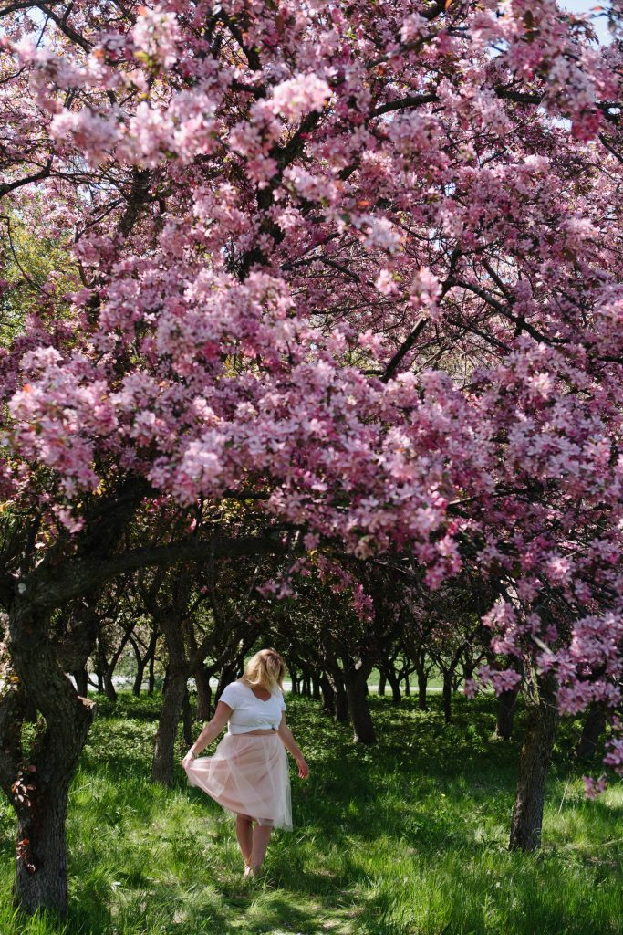 Chantal 4 Ottawa Fashion Blogger Curvy Plus-Size photos lincoln fields cherry blossom pink trees