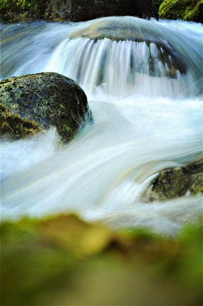 Oregon Life - Road Trips Oregon. Mossy rocks fill Opal Creek, in Oregon's Opal Creek Wilderness. Water cascades over ancient rock in the center of the creek.