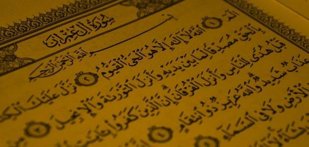 سور وآيات فاضلة موضوع