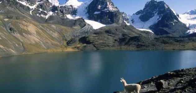أكبر بحيرة في أمريكا الجنوبية موضوع