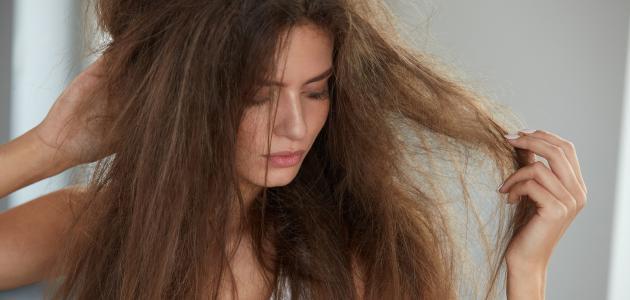 نتيجة بحث الصور عن علاج تقصف الشعر نهائياً في المنزل