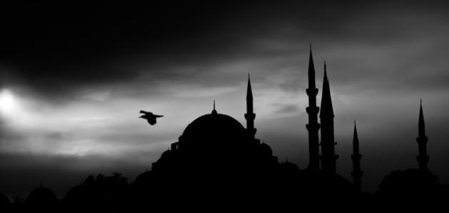 حكم ممارسة العادة في رمضان موضوع