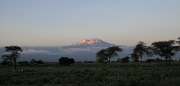 ما هو أعلى جبل في إفريقيا موضوع