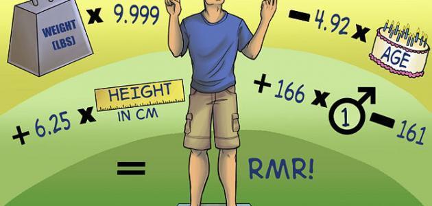 طريقة حساب السعرات الحرارية التي يحتاجها الجسم موضوع