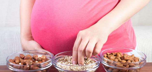 أفضل غذاء للحامل في الشهور الأولى موضوع