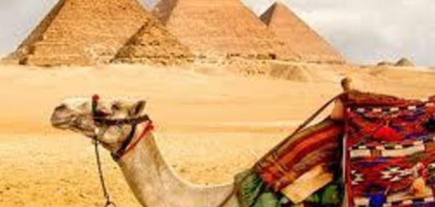 موضوع تعبير عن السياحة في مصر موضوع