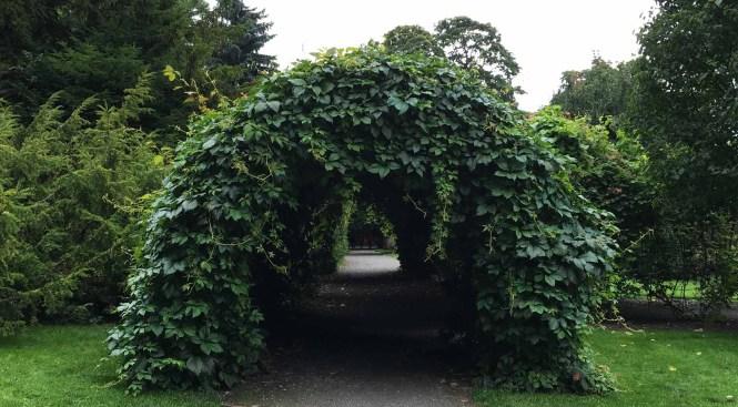 Jardín botánico de Oslo. Qué ver en Oslo en 4 días